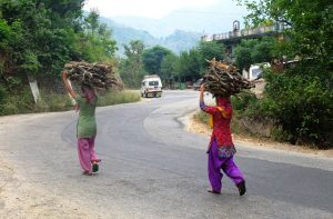 Hardworking Ladies in Uttarakhand