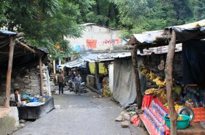 Small Market on the way to Ghangharia