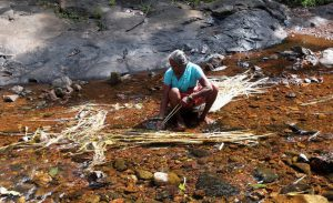 Local Lady Making Ropee out of Natural Fibre