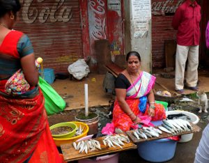Local Goan Lady Selling Fish while Cat Patiently looks on