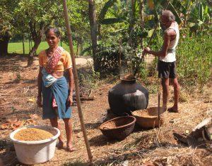 Making Par Boiled Rice
