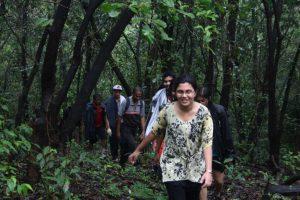 Exploring Dense Forest